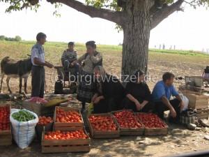 Tomatenverkauf an der Straße